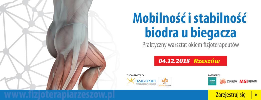 Mobilność i stabi...